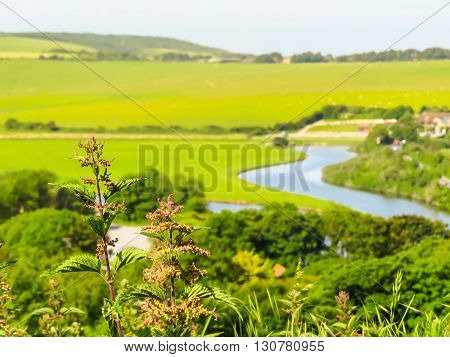 Seven Sisters National Park, Cuckmere river Valley, East Sussex, England. Selective focus
