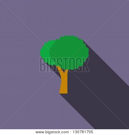 Stylized tree icon in flat style with long shadow