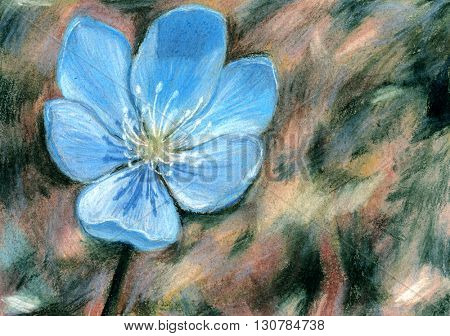 Blue flower -  hand draw crayon painting