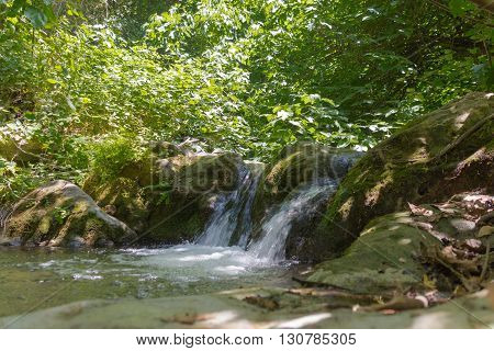 Small Waterfall In A Forest Stream