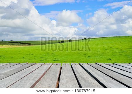 Green field and wooden walkway with blue sky background