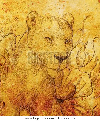 Lioness with flower, pencil drawing. Color effect and Computer collage