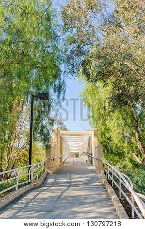 Bridge For Exercise Trail