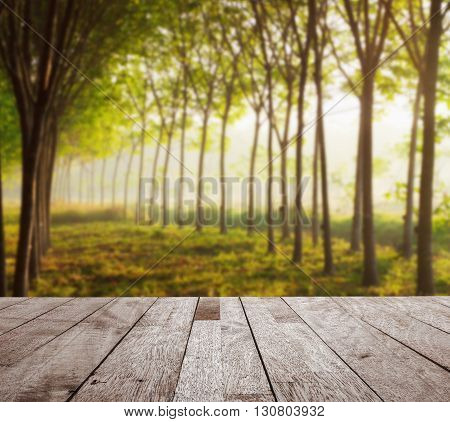 Wooden table top on blurred para rubber tree garden in morning light Can be use for display or montage you product