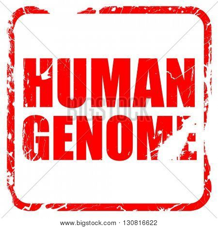 human genome, red rubber stamp with grunge edges