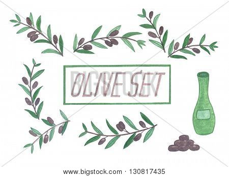 Set of watercolor olive branches. Isolated illustration on white background. Organic and natural concept.