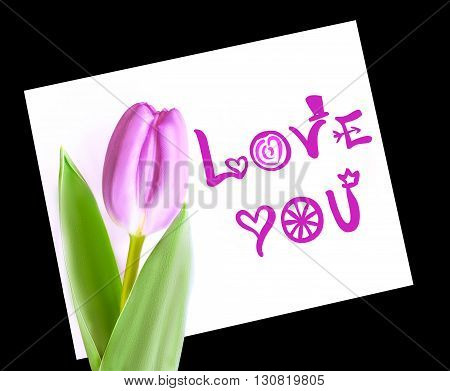 Violet tulip on white paper note love you. Isolated on black background. Card with love you marker handwritten text. Pink tulip with light green leafs lying on the white paper. Cutout macro of one flower with bright handmade gift card.