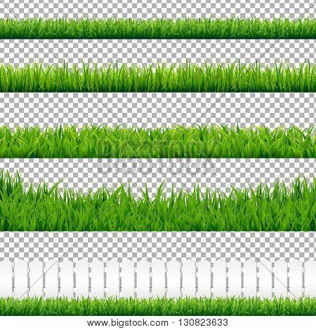 grass transparent background. realistic green grass borders, isolated on transparent background, vector  illustration poster grass transparent background u