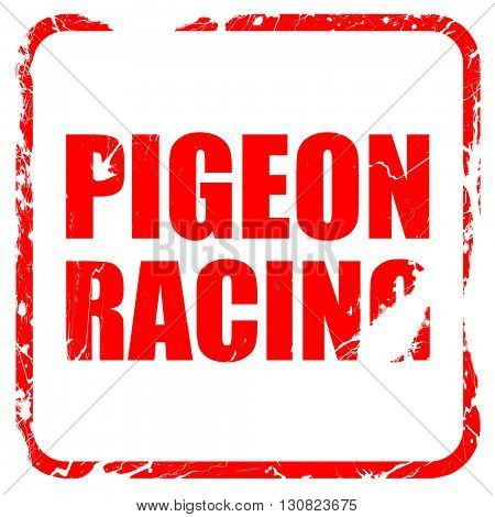 pigeon racing, red rubber stamp with grunge edges