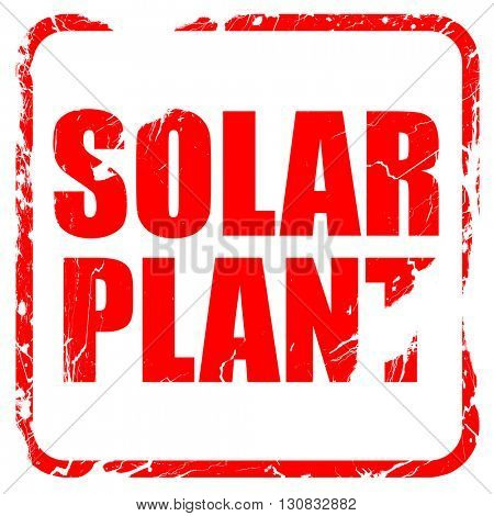 solar plant, red rubber stamp with grunge edges