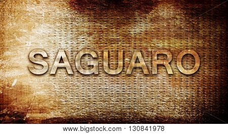 Saguaro, 3D rendering, text on a metal background