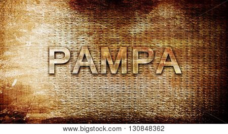 pampa, 3D rendering, text on a metal background