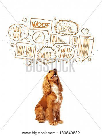 Cute cocker spaniel with barking speech bubbles above her head