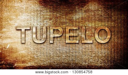 tupelo, 3D rendering, text on a metal background