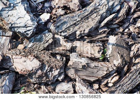 wood chip background texture