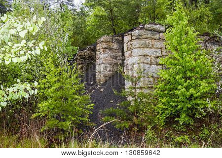 Stone coal bin in overgrown field with trees and plants.