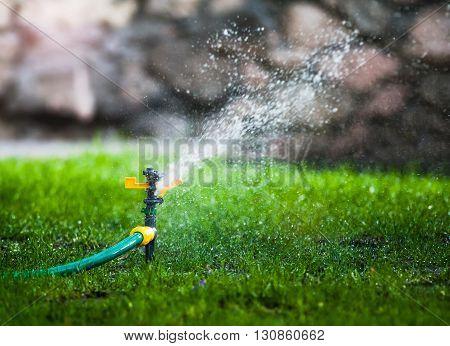 water sprayer in the park in summer
