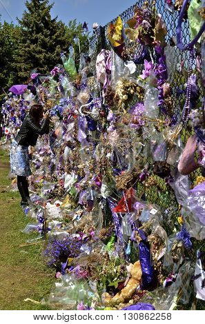 CHANHASSEN, MINNESOTA, May 13, 2016: Memorials of flowers, balloons, and purple decorate the fence around Paisley Park, the home of Prince Rogers Nelson as an unknown tourist photographs through the chain link.