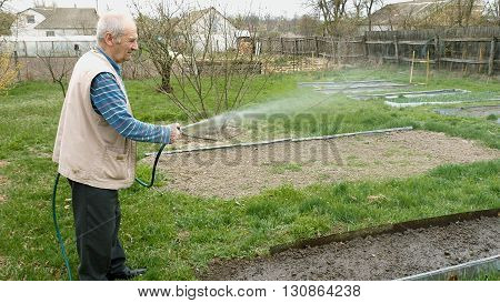 Senior elderly aged old man waters pours showers and hoses a vegetable bed in the kitchen garden outside the house. Country rural agricultural scene.