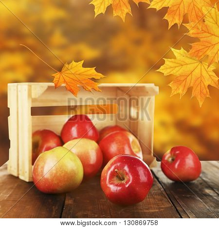 Spilled red apples near crate on nature background