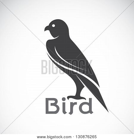 Vector image of an bird design on white background Bird logo Eagle design