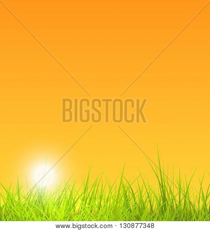 Illustration Summer Nature Background with Grass, Sunset - Vector