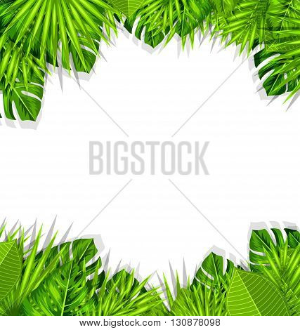 Illustration Summer Fresh Background with Tropical Leaves and Copy Space for Your Text - Vector