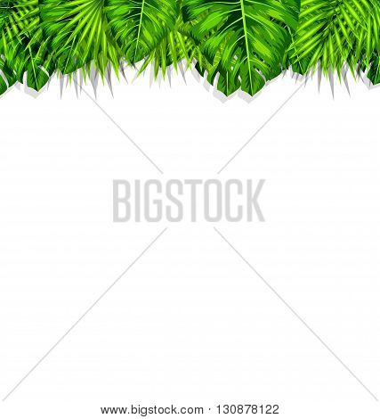 Illustration Natural Frame with Green Tropical Leaves, Summer Beautiful Background - Vector