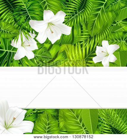 Frame border background branch with tropical leaves and white flowers lily, space for text, design template - vector