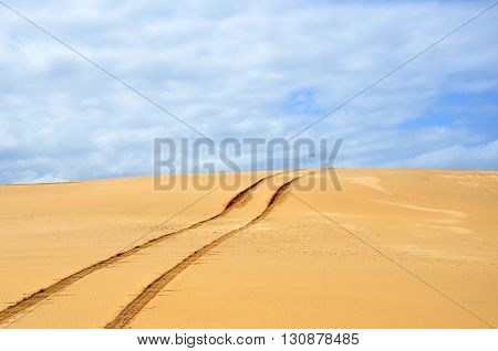 Vehicle tracks over a remote, deserted sand dune