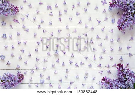 Lilac flowers pattern on white wooden background. Flat lay of purple lilac flowers on white backdrop, flat lay