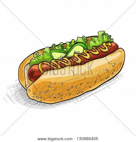 simple hot dog with ketchup and mustard and salad image isolated on a white background