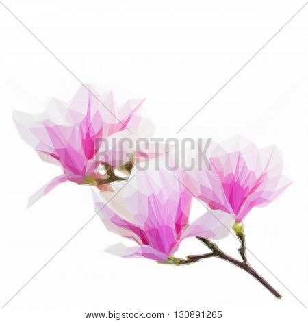 Low poly illustration brunch with blooming pink magnolia flower buds