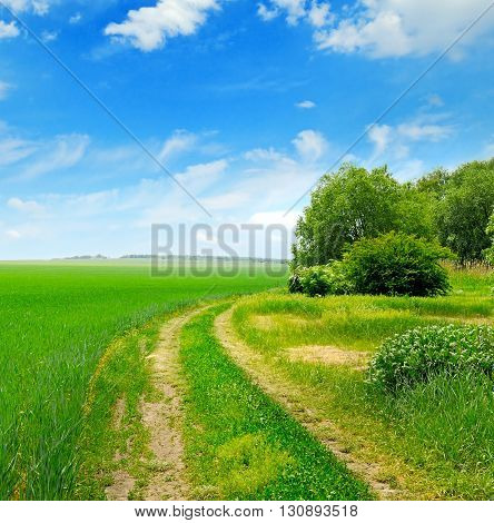 field country road and a blue sky