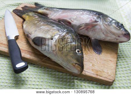 Big fish - carp on a cutting board