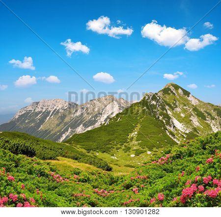 Triglav National Park - Julian Alps, Slovenia