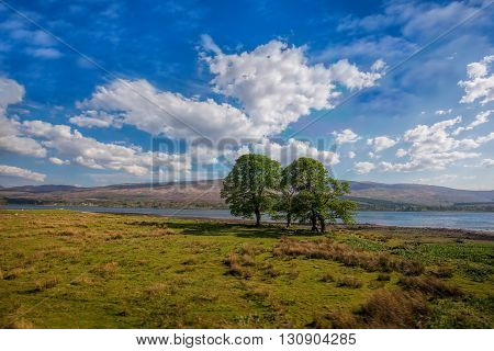 Loch Eil with trees near the Fort William in Scotland