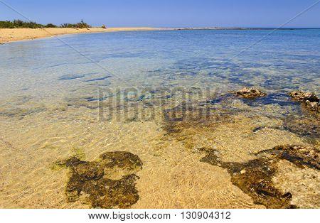Porto Cesareo:Nature Reserve Isola Grande (Lecce).- ITALY (Apulia)