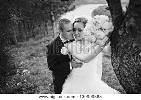 Extravagant Wedding Couple Hugging Near Pine Tree, B&w Photo