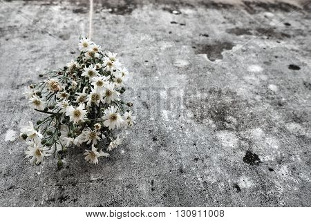 Bouquet Of Flower On Old Wall Background