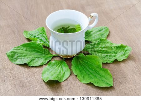 Herbal tea from the leaves of the plantain