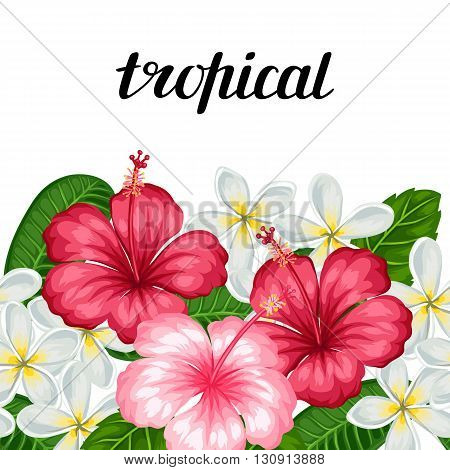 Seamless border with tropical flowers hibiscus and plumeria. Background made without clipping mask. Easy to use for backdrop, textile, wrapping paper.