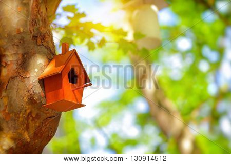 Closeup photo of a cute little nesting box on a tree trunk in a park, handmade house for birds, fauna protection, let's help nature together, save Planet Earth