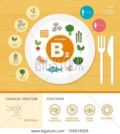 Vitamin B2 nutrition infographic with healthcare and food icons: diet healthy food and well being concept