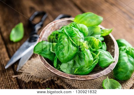 Fresh Basil (close-up Shot)