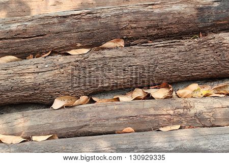 wood pile. Raw of wood. Raw timber stacked.