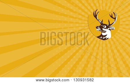 Business card showing illustration of a whitetail deer buck stag head looking to the side set inside shield crest done in retro style.