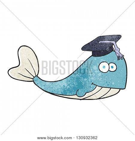 freehand textured cartoon whale graduate