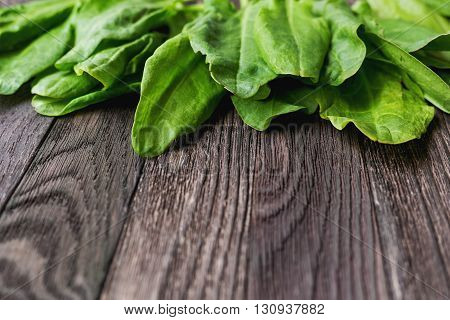 Fresh leaves of sorrel on wooden background. Rustic table with green edible leaves. Place for text.