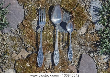 fork and spoon on moss and stone background close up